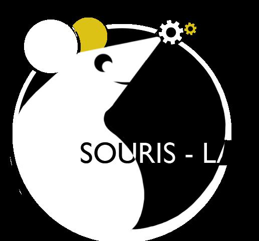 Souris-lab